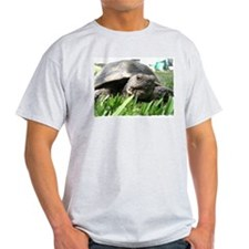 Helaine's Desert Tortoise T-Shirt