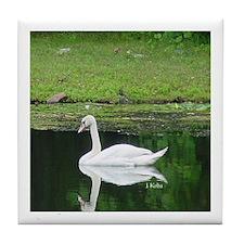 Swan River (Denville,NJ)
