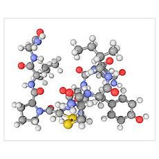 Oxytocin neurotransmitter molecule Poster