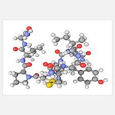 Oxytocin neurotransmitter molecule
