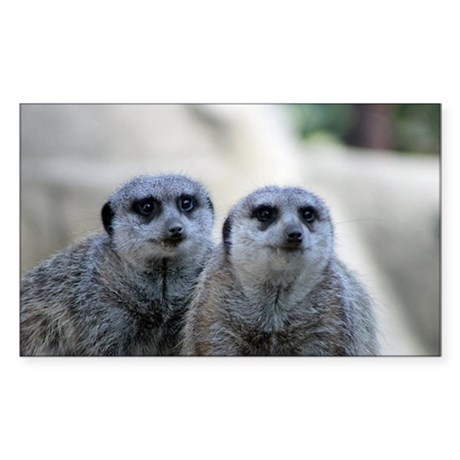 Meerkats 2 Sticker (Rectangle)