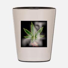 Cool Smoking Shot Glass