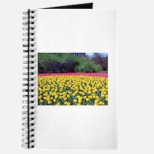 Ottawa Tulips Journal