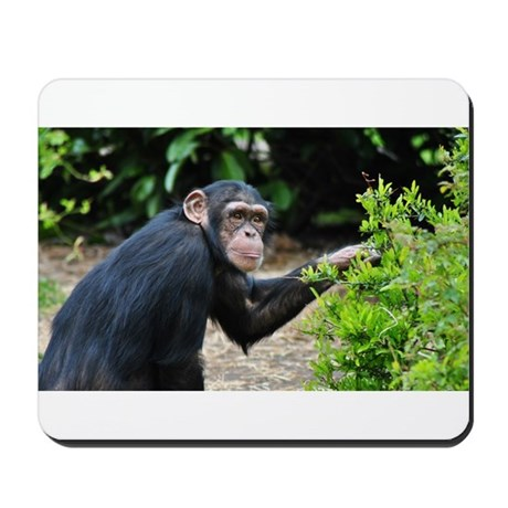 Primate Mousepad