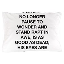Stand In Awe Pillow Case