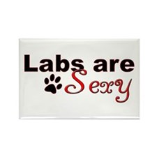 Labs are Sexy Rectangle Magnet