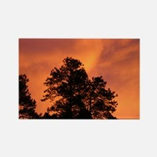 Fire in the Sky Rectangle Magnet
