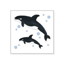 "Killer Orca Whales Square Sticker 3"" x 3"""