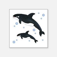 """Killer Orca Whales Square Sticker 3"""" x 3"""""""