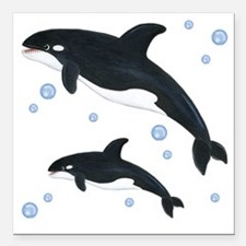 "Killer Orca Whales Square Car Magnet 3"" x 3"""