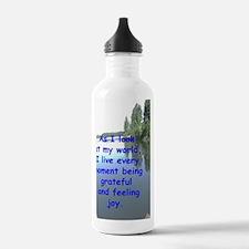 Cool Sere Water Bottle
