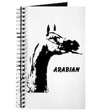 AFTM Arabian Head Neck2 Journal