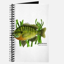 Bluegill Journal