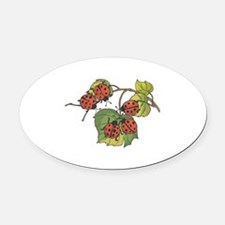 ladybugsonleaves copy.jpg Oval Car Magnet