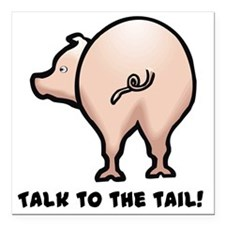 "talk to the tail.png Square Car Magnet 3"" x 3"""