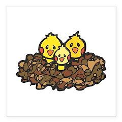 baby chicks in nest.jpg Square Car Magnet 3