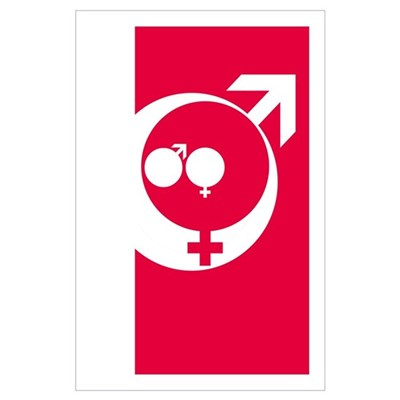 Family male and female symbols Poster