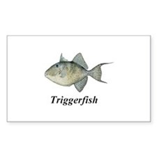Triggerfish Decal