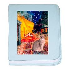 Cafe & Blue Abbysinian baby blanket