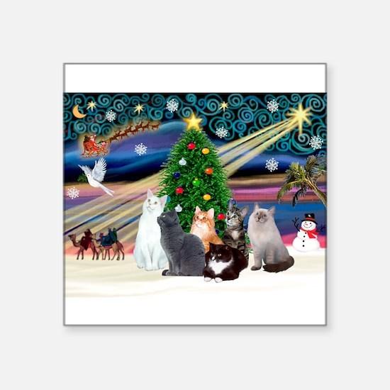 "Xmas Magic / Six Cats Square Sticker 3"" x 3"""