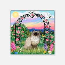 "Rose Arbor / Himalayan Cat Square Sticker 3"" x 3"""