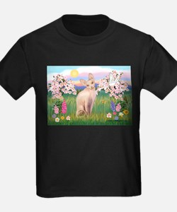 Spring Blossoms & Sphynx Cat T