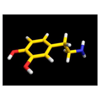 Dopamine molecule Poster