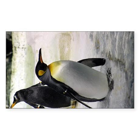 King Penguin 7 Sticker (Rectangle)