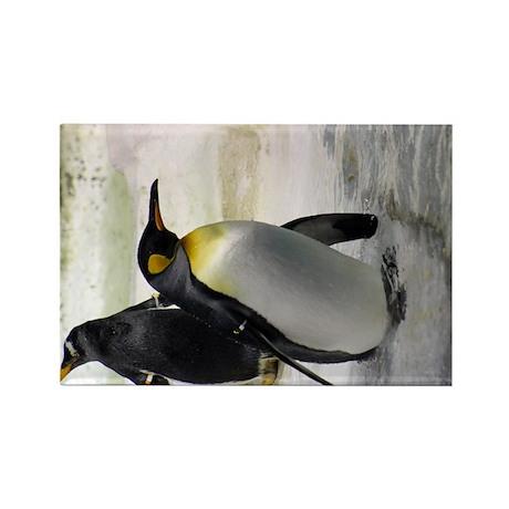 King Penguin 7 Rectangle Magnet (10 pack)