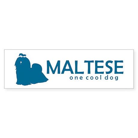 "Maltese ""One Cool Dog"" Bumper Sticker"
