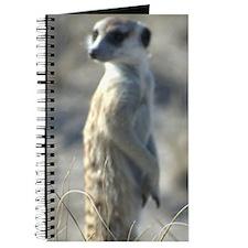 Meerket Journal