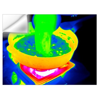 Cooking with a saucepan, thermogram Wall Decal