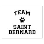 Team Saint Bernard Small Poster