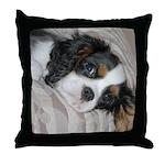 Cavalier King CharlesThrow Pillow