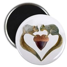 Love Squirrels Magnet