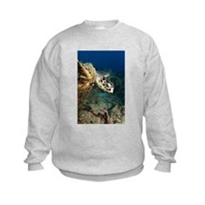 'Flying Turtle' Sweatshirt