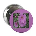 Fe's Pink Malva Button