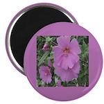 Fe's Pink Malva Magnet