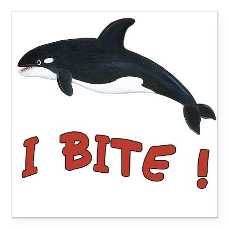 "Orca Killer Whale - I Bite Square Car Magnet 3"" x"