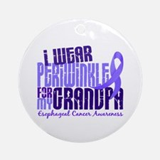 I Wear Periwinkle 6.4 Esophageal Cancer Ornament (