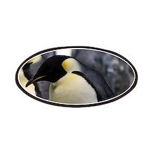 Emperor Penguins 5 Patches