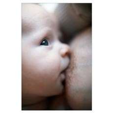 Breastfeeding baby boy Poster