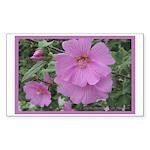 Fe's Pink Malva Rectangle Sticker