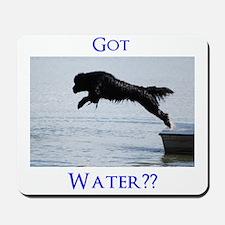 Got Water?? Mousepad