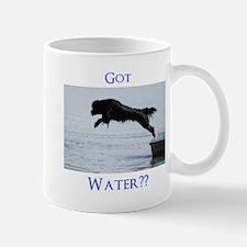 Got Water?? Mug