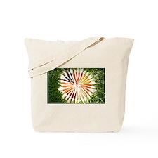 BagInn Carrot Spiral. Tote Bag