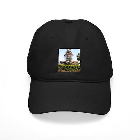Charleston SC Waterfront Park Black Cap