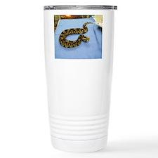 Polylepis Travel Mug