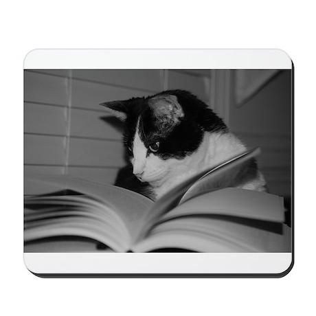 Max Studying Mousepad
