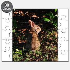Baby Bunny Puzzle